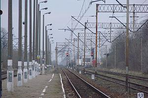 in Wieluń