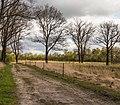 Wijnjeterper Schar, Natura 2000-gebied provincie Friesland 018.jpg