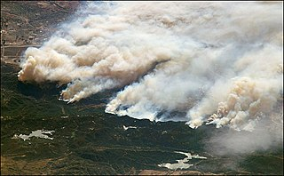 scientific discipline concerned with natural processes involving fire in an ecosystem and the ecological effects