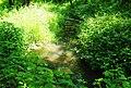 Wilsonville Memorial Park Boeckman Creek 3.JPG
