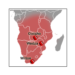 Wilton culture map.png