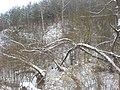 Winter storm6.JPG