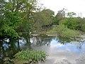 Wold Newton Larger Pond - geograph.org.uk - 1282456.jpg