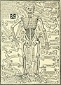 Wunder, Wundergeburt und Wundergestalt in Einblattdrucken des fünfzehnten bis achtzehnten Jahrhunderts; kulturhistorische Studie (1921) (14774506744).jpg