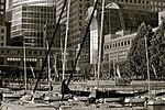 Yachts at Battery Park Marina, New York City (5895851767).jpg