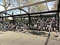 Zevenaar, fietsenstalling bij station.jpg