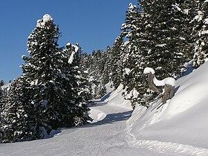 Zillertal Arena - Image: Zillertalarena Ziehweg 1