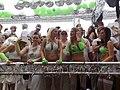 Zurich Street Parade 2009 008.jpg