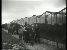 Bestand:Zweedse boeren op studiereis door ons land-PGM4012040.webm