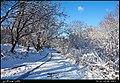 (((مناظر اطراف روستای تازه کند سفلی مراغه))) - panoramio (2).jpg
