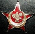 Çanakkale subay madalyası-temizlenmiş.JPG
