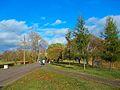 Аллея в северной части парка.JPG