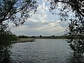 Арка деревьев над Лаптевским прудом - panoramio.jpg