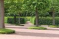 Верхний сад (Петергоф)15.JPG