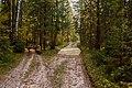 Дорога от карьера - panoramio.jpg
