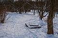 Зимовий парк заріччя.jpg
