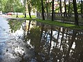 Лужа на ул. Седова - panoramio.jpg