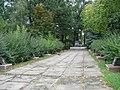 Меморіальний комплекс, Борова.JPG