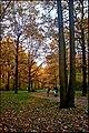 Осень в Ботаническом саду - panoramio.jpg