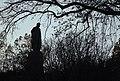 Пам'ятник Т.Г.Шевченку 2.jpg