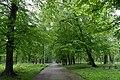 Парк Шевченка Стрий 2.jpg