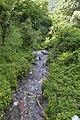 Реката Камештица во Нежилово.jpg