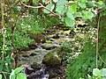 Река во близина на село Дреново 02.jpg