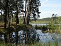 Святе озеро. 1.jpg