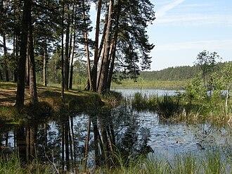 Lower Polissia National Nature Park - Image: Святе озеро. 1