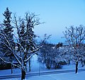 Царникава (Латвия) Зимняя дорога (фрагмент) - panoramio.jpg