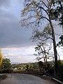 ทางกลับจากหมู่บ้านจีนยูนานที่ปาย - panoramio.jpg
