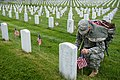 """""""Flags in"""" with The Old Guard in Arlington National Cemetery (17924758466).jpg"""