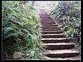 去往庙儿坡的阶梯 - panoramio.jpg