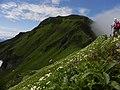 富良野岳(For Mt. Furano) - panoramio.jpg