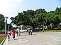 雀山公园 - panoramio (5).jpg