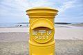 黄色 (16681282692).jpg