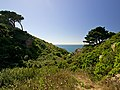 - panoramio (4969).jpg