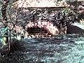 - panoramio - RaulAlbNET (2).jpg