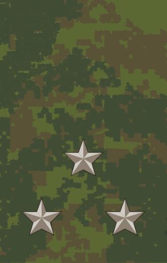 Senior lieutenant - Image: 11stlt