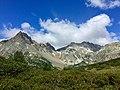 12 alpe Devero, il Grande Est.jpg