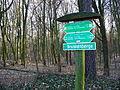 15-02-08-Aussichtsturm-Eberswalde-Brunnenberge-RalfR-P1040296-03.jpg