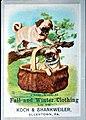 1880 - Koch & Shankweiler - Trade Card 3 - Allentown PA.jpg
