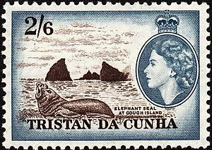 Gough Island - Elephant seal at Gough Island depicted on a 1954 Tristan da Cunha stamp