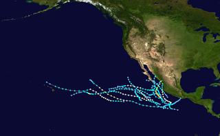 1981 Pacific hurricane season hurricane season in the Pacific Ocean