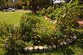 2005 Meredith community garden HoustonTX 256568308.jpg
