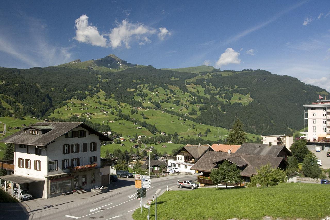 2008-07-20 Grindelwald.jpg