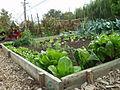 2010 Beresford Community Garden SanMateo CA 5018270059.jpg
