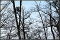 2013 Március 16. Behavazva - panoramio (1).jpg