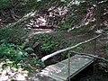 20140812040DR Röhrsdorf (Dohna) Schloßpark Röhrsdorfer Grund.jpg