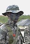 2015.9.2.해병대 1사단-상륙기습훈련 2nd Sep, 2015, ROK 1st Marine Division - amphibious warfare training (21110004246).jpg
